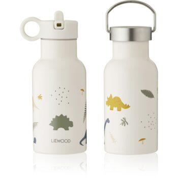 anker water bottle dino