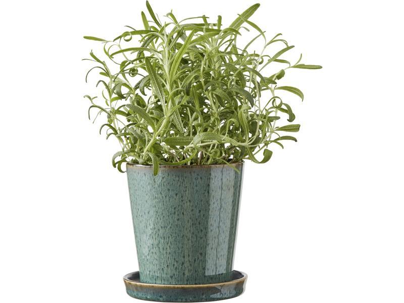 bitz plant pot