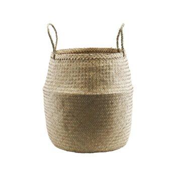 Basket sea grass,