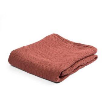 baby blanket sebra